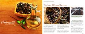 Kostenloser Download: Olivenöl Broschüre Teil 1